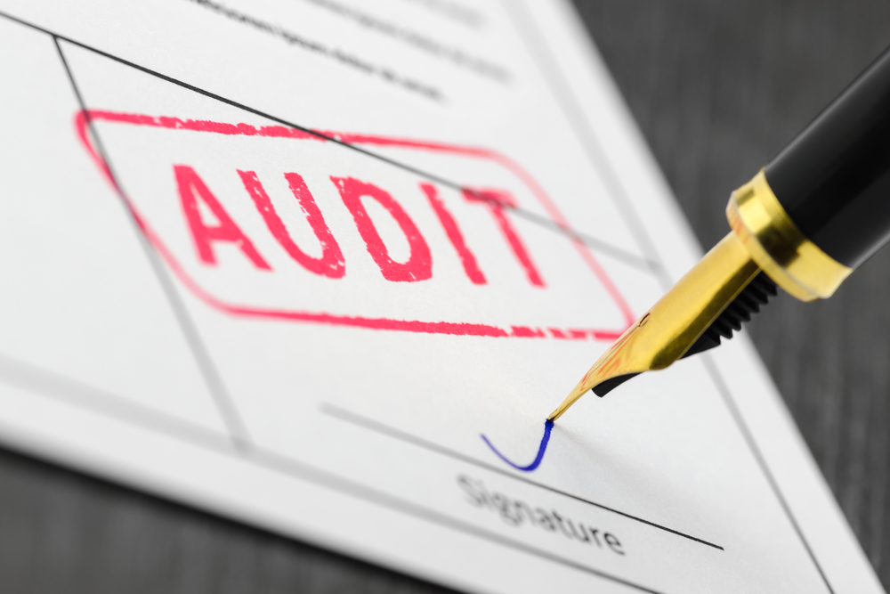 What Is an Audit?