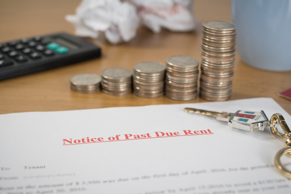 Struggling to Settle Your Tax Debt? Filing for Financial Hardship Offers a Solution